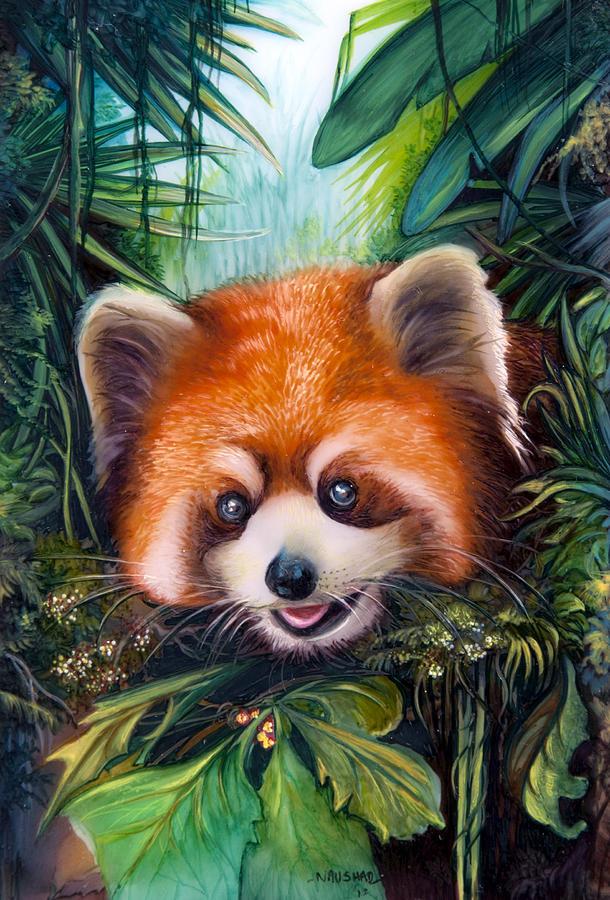 red-panda-naushad-waheed