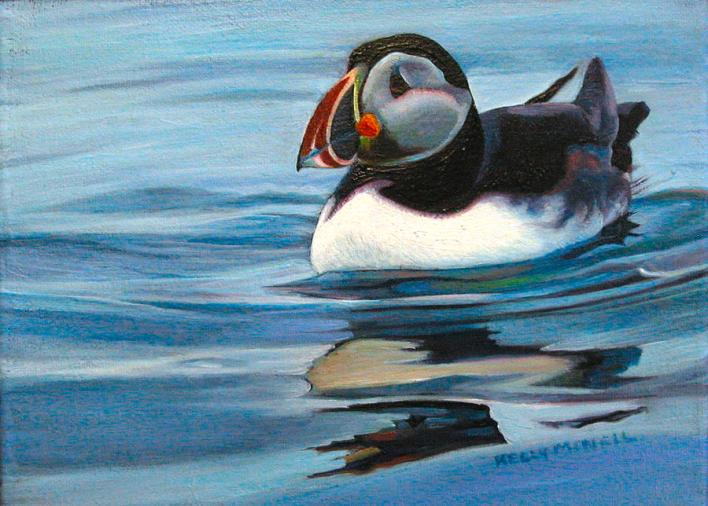 atlantic-puffin-1-kelly-mcneil
